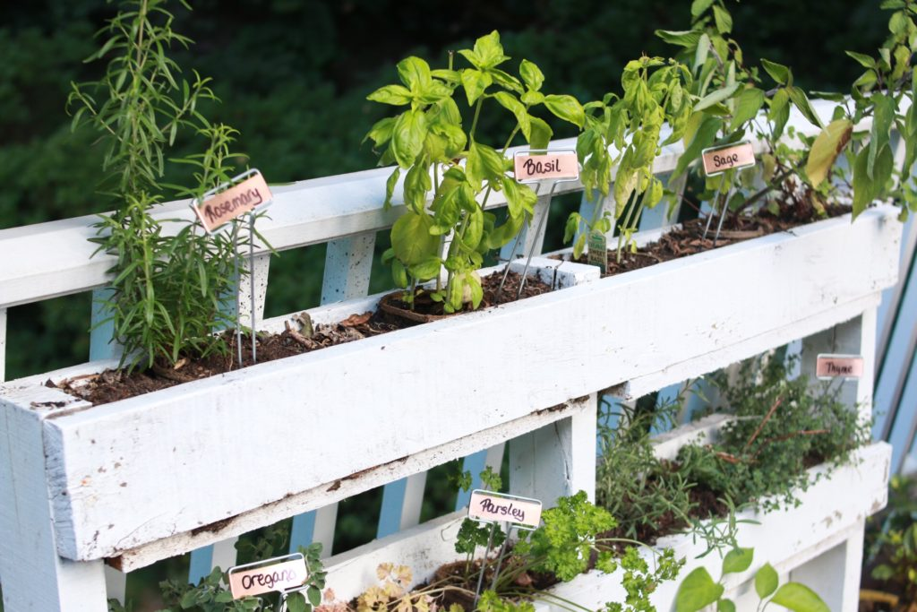 Wood Pallet Herb Garden - Therapeutic Miles